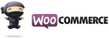Woocommerce – Redirection après recherche